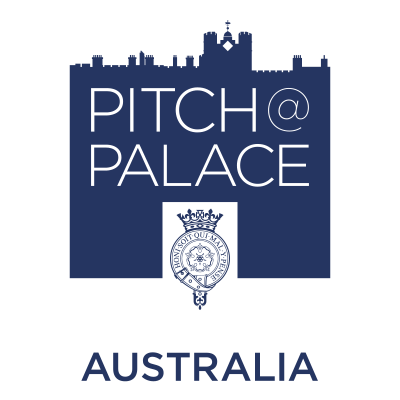 SA Entrepreneurs make a pitch to the palace